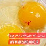 لکه خون در داخل تخم مرغ
